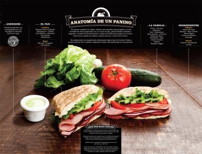 Anatomía de panino